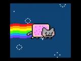 в моем мире коты сделаны из печенья и какают радугой)))