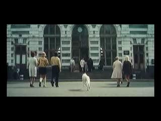 Белый Бим Черное ухо(Чаще всего советские режиссёры снимали фильмы лучше,чем американозы в наше время)