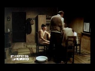 Другое кино с Кириллом Серебренниковым. Помнишь ли ты Долли Белл (Эмир Кустурица)
