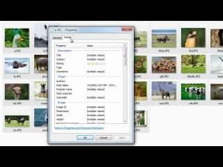 Как удалить персональную информацию с ваших цифровых фото