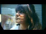 Fungi Girls - Velvet Days