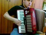аккордеон тбилисо