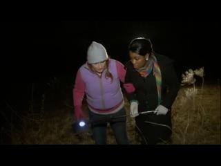 Встречи с неведомым 5: Дженосква / Freak Encounters (2010)