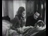 Белль и Себастьян / Belle et Sebastien. Saison 1 Belle et Sebastien (1965). 12