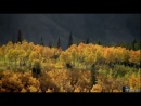 Йеллоустоун. Борьба за жизнь, ф.3из3 ОСЕНЬ / Yellowstone. Battle For Life, p.3 (BBC, 2009)