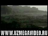 Wild Caribbean Karib Dengiz Xavzasi (O'zbek tilida)