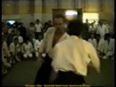 Семинар Айкидо Белые Ночи 1992