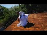 Свадебный клип «Вика и Илья»