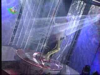 Чемпионат Украины по стриптизу 2003 04 Линда Киев