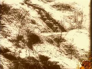 Исторические хроники с Николаем Сванидзе. 1906 год. Александр Блок