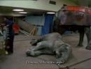 Фильм животных / The Animals Film (1981) Прототип фильма «Земляне». «Фильм животных» — британский документальный фильм 1981 года, рассказывающий о ежедневной практике жестокого обращения с животными при их эксплуатации в различных сферах человеческой деятельности. Стал первым полнометражным фильмом такого рода в Великобритании. Фильм содержит документальную хронику, мультипликацию, интервью на улицах, фрагменты рекламы и государственной пропаганды. Режиссёры: Виктор Шёнфельд и Мириам Ало.
