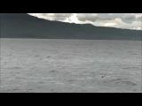 Jonas Steur ft. Jennifer Rene- Still I Wait