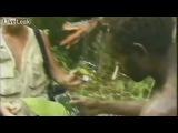 В Новой Гвинеи в 1976 году племя диких попуасов впервые встретило белого человека, похоже