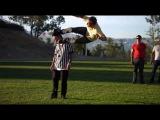 Чудаки 3.5 / Jackass 3.5 (2012) :D