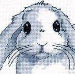 Жили-были на лесной поляне шесть зайцев.  Жили не тужили.  Спали в одной норе, вырытой в холмике под деревом.