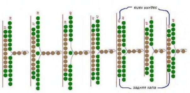Вторая часть схемы (туловище) .
