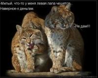 Саша Криминал, 14 февраля , Москва, id7039990