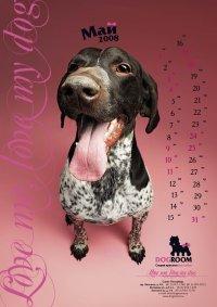 Рекламное агентство Brainmade создало календарь для студии красоты для собак Dogroom.
