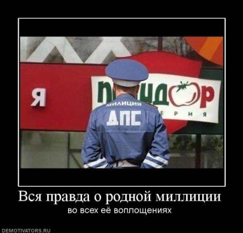 http://cs1356.vkontakte.ru/u20844571/99344096/x_8eea3151.jpg