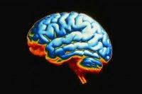 Его Мозг, 2 сентября 1991, Киев, id15365499