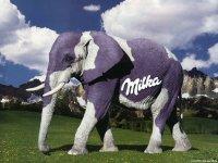 Слон Слоняный