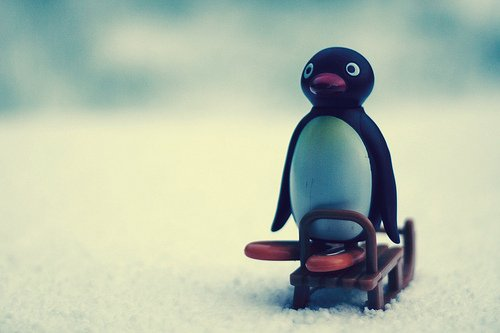 Winter!!!
