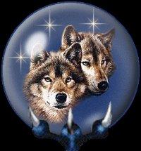 """Схема вышивки  """"Пара волков """": схема."""
