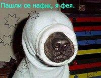Алексей Медведев, 8 июля 1988, Екатеринбург, id15349834