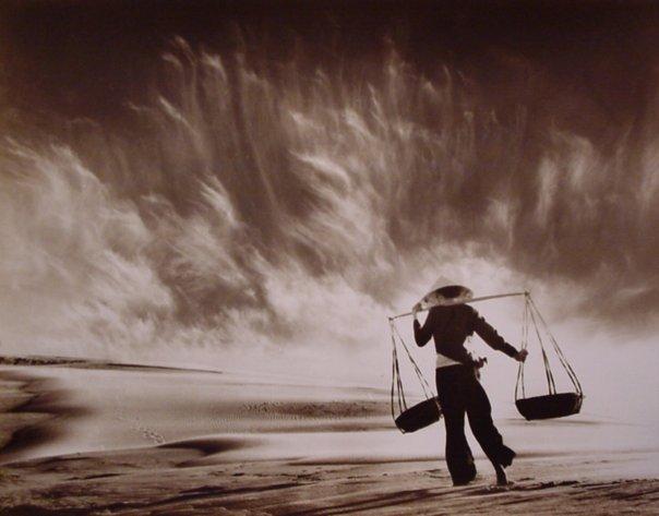 Профессиональные фото природы от Дон Хонг-Оай
