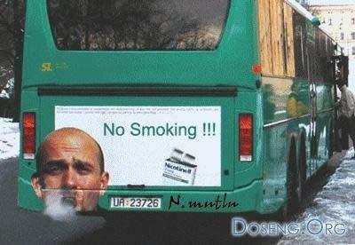 http://cs1531.vkontakte.ru/u19327511/52749229/x_31aa429f.jpg