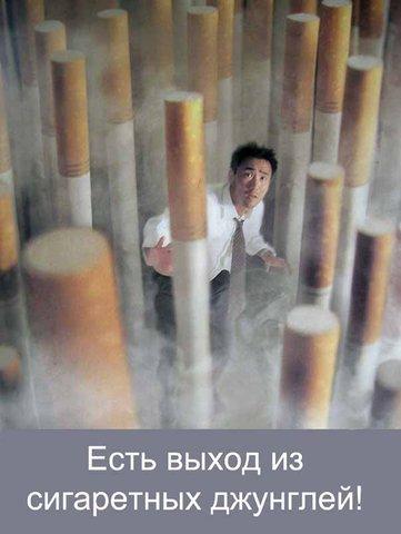 http://cs1531.vkontakte.ru/u19327511/52749229/x_92901e43.jpg