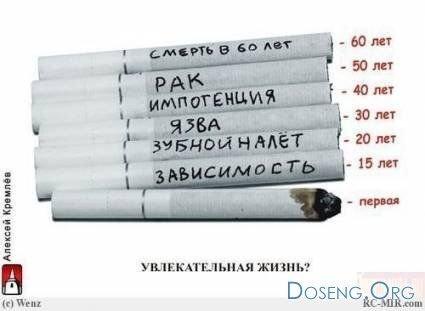http://cs1531.vkontakte.ru/u19327511/52749229/x_e6625c13.jpg