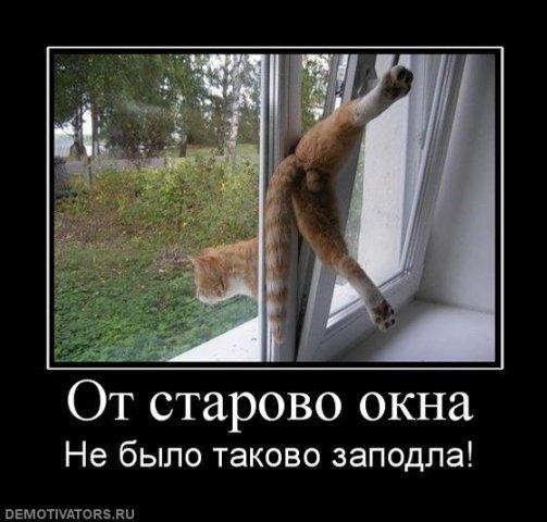 http://cs1532.vkontakte.ru/u17245529/77129404/x_328a1037.jpg