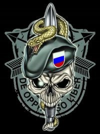 Денис Михрин, 9 июня 1992, Новосибирск, id15255992