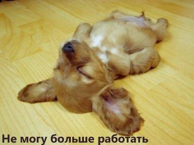 когда же я высплюсь:
