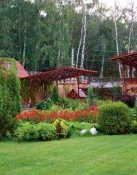 красивый огород на даче своими руками фото
