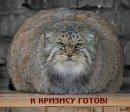 Ольга Ефименко фото #42
