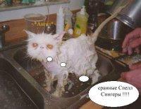.::[Diman].:: ^^, 28 сентября , Москва, id16654469
