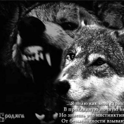 Александр Асманов, 17 января , Никель, id37918149