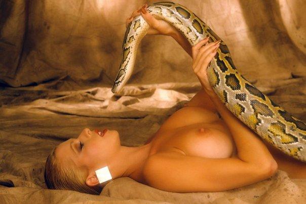 порнофото с змей
