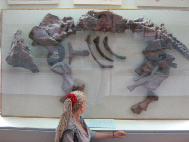 Мои путешествия. Елена Руденко. Киев (Научно-природоведческий музей.  ). 2009г. X_5e3eedc8