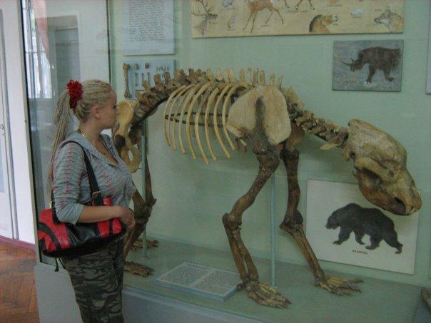 Мои путешествия. Елена Руденко. Киев (Научно-природоведческий музей.  ). 2009г. X_ae71f95d
