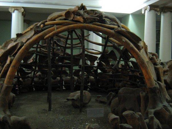 Мои путешествия. Елена Руденко. Киев (Научно-природоведческий музей.  ). 2009г. X_eb2a00ca