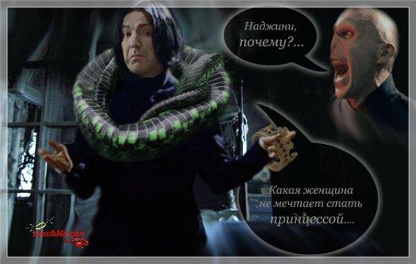 http://cs1628.vkontakte.ru/u18701073/39473405/x_2046d2f3.jpg