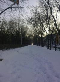 Елена Науменко, Луганск, id23936746