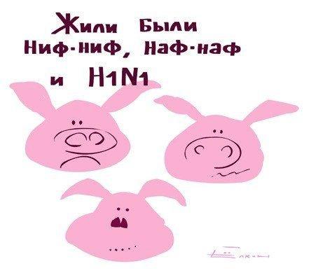 http://cs1675.vkontakte.ru/u8676372/97899810/x_4f97e241.jpg