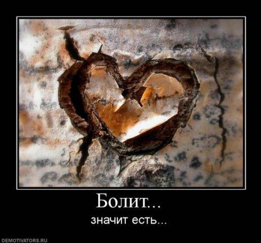 http://cs1683.vkontakte.ru/u13381297/100734097/x_fedc3583.jpg
