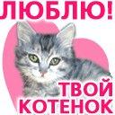 Маша Ромашка, 1 марта , Волхов, id29256107