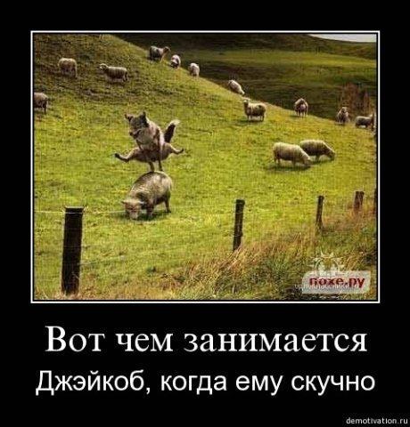 http://cs1689.vkontakte.ru/u46039115/101073077/x_d020d257.jpg
