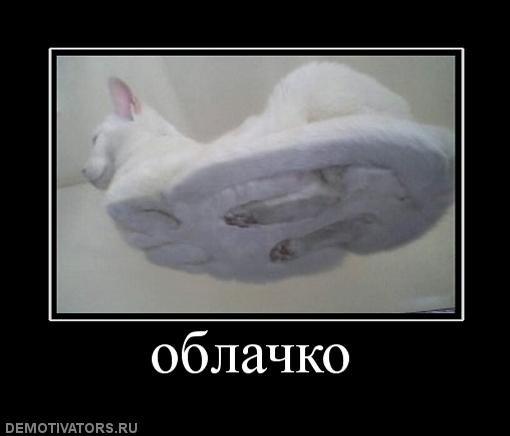 http://cs1692.vkontakte.ru/u10689432/98551599/x_dea4a2b7.jpg